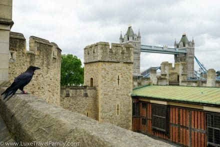 Raven Tower Bridge Context Travel Tower of London