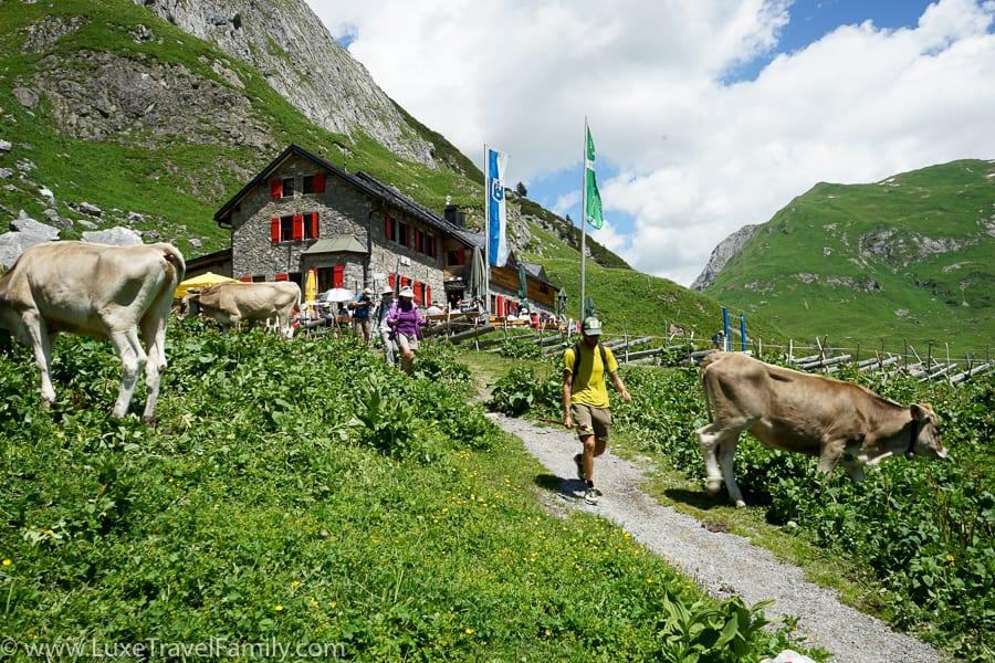 Family hiking in Lech Ravensburger Hut