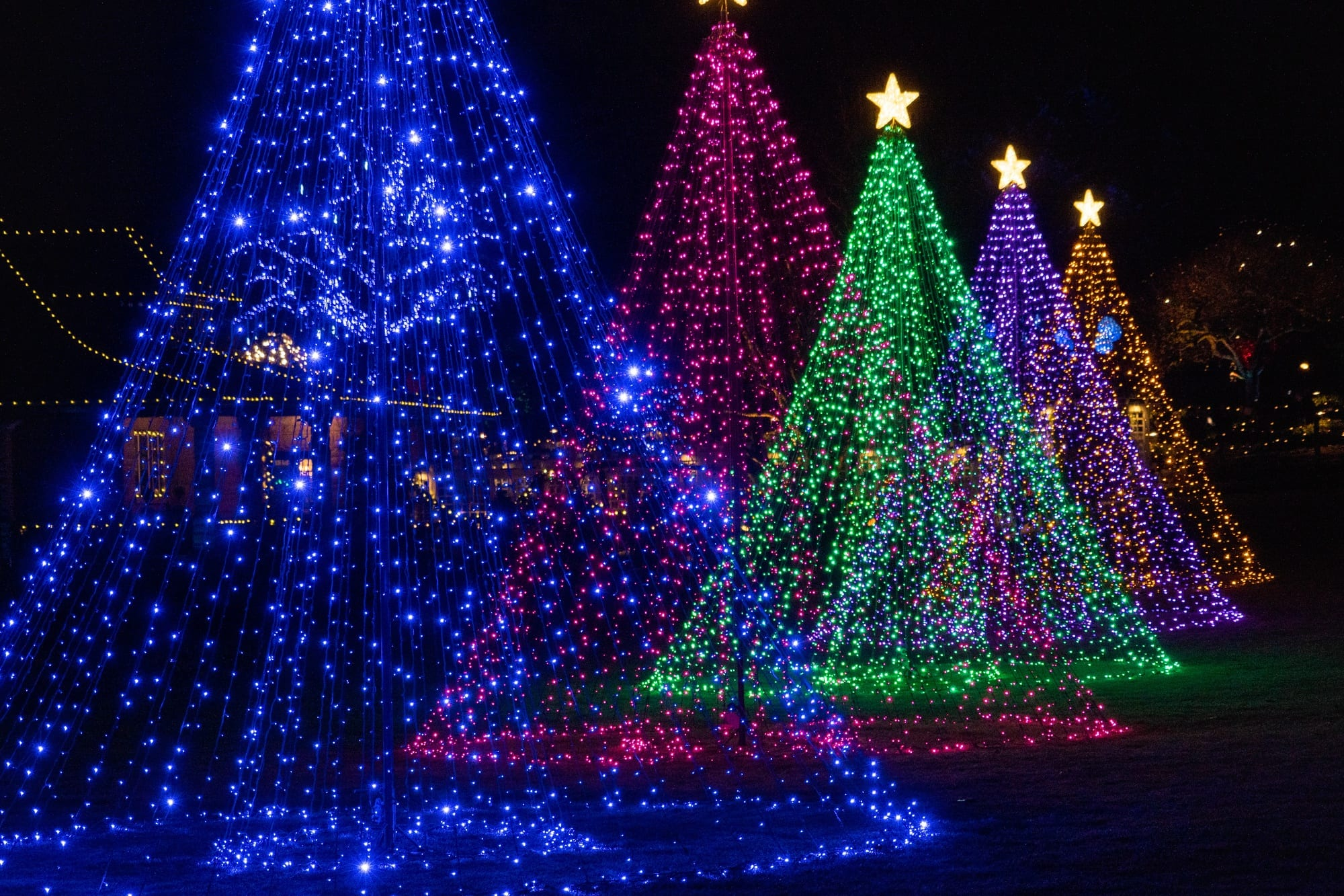 Festive (and Family-Friendly) Things to Do in Victoria, B.C. at Christmas
