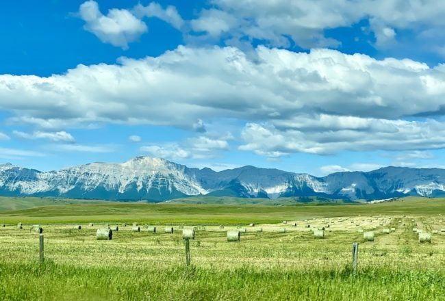hay field mountains summer 2020 road trip essentials